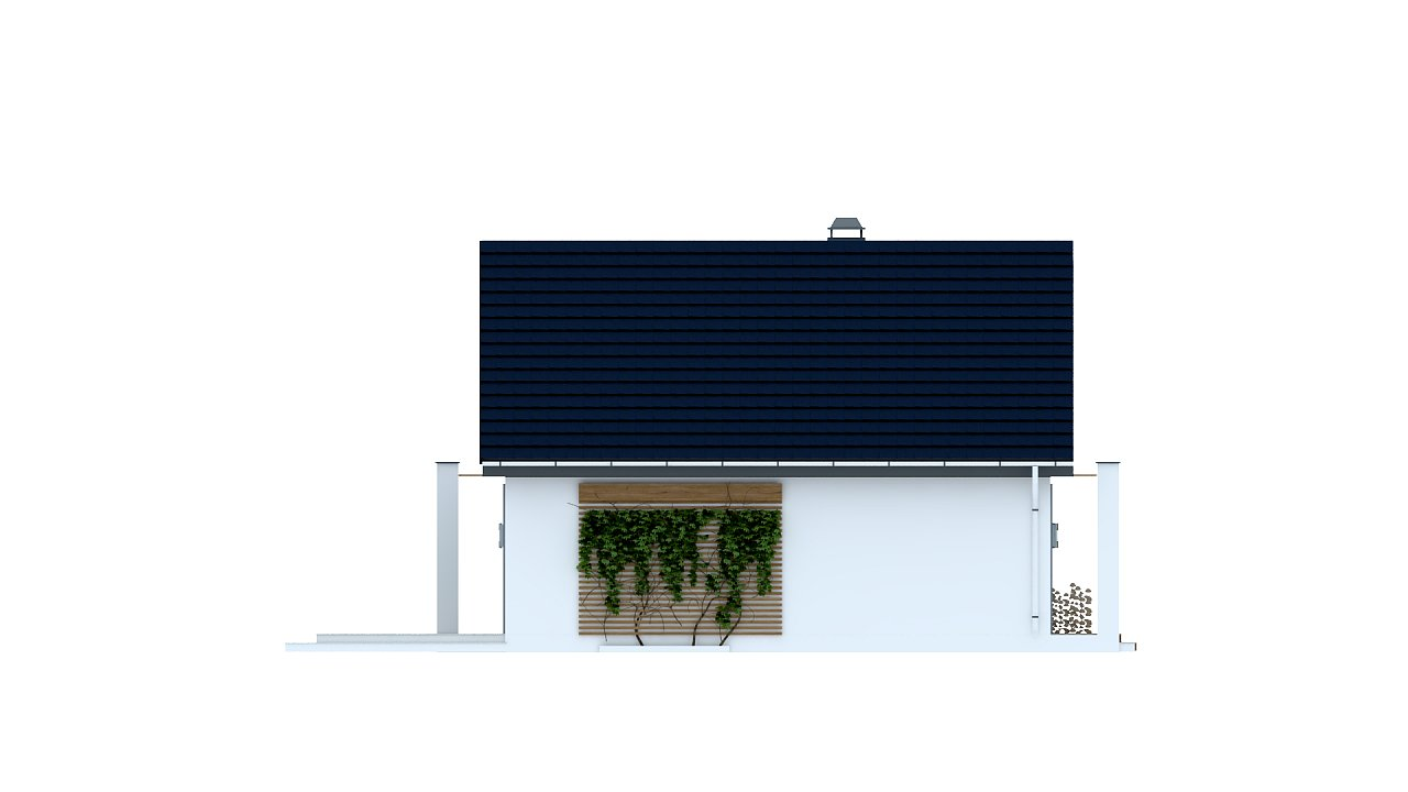 Одноэтажный дом с дополнительной фронтальной террасой. 5