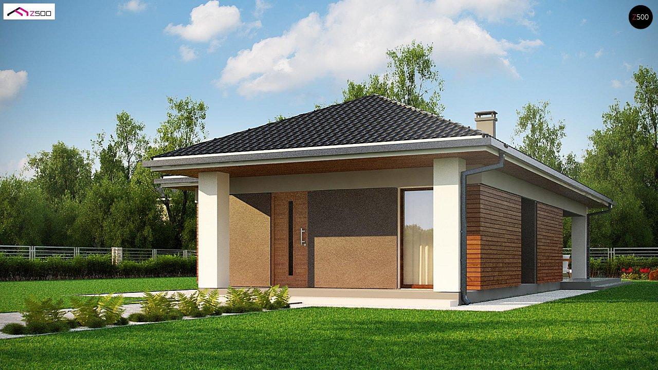 Одноэтажный дом в традиционном стиле с просторной гостиной - фото 1