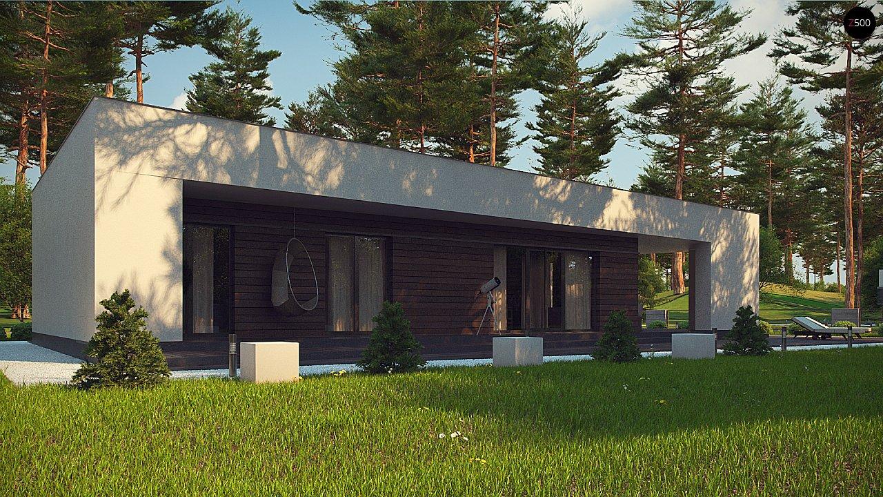 Современный одноэтажный дом с боковой террасой 10