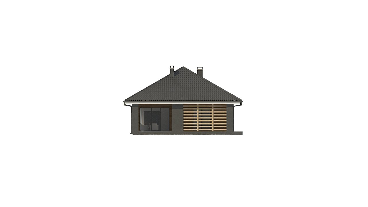 Одноэтажный дом в современном стиле с двойным гаражом 22