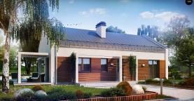 Проект небольшого одноэтажного дома простого современного дизайна.