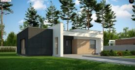 Семейный домик с плоской крышей