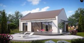 Компактный одноэтажный дом современного дизайна со светлым интерьером.