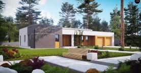 Комфортный одноэтажный дом в современном стиле с гаражом для двух авто.
