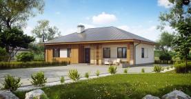 Практичный одноэтажный дом традиционной формы с многоскатной крышей.