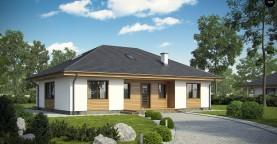 Комфортный одноэтажный дом традиционного дизайна.