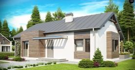 Функциональный одноэтажный дом с современными элементами отделки фасадов.