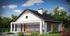 Одноэтажный дом с дополнительной фронтальной террасой.