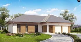 Проект комфортного одноэтажного дома с фронтальным гаражом для двух машин.