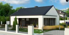 Компактный одноэтажный дом с двускатной крышей и 3 спальнями