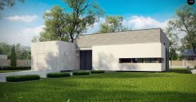 Проект одноэтажного дома в стиле модерн эффектной формы