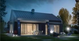 Компактный одноэтажный дом современного дизайна с необычным оформлением террасы.