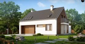 Комфортный дом с гаражом простого аккуратного дизайна.