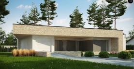Одноэтажный коттедж с гаражом на одну машину и уютной террасой