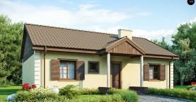 Выгодный и простой в строительстве дом полезной площадью 100 м2.