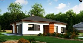 Удобный одноэтажный дом небольшой площади