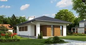Одноэтажный функциональный дом для небольшой семьи