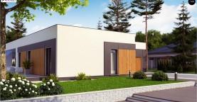Проект стильного одноэтажного дома в современном стиле