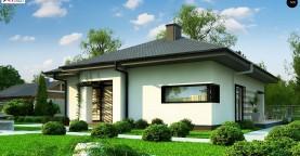Одноэтажный уютный дом современной планировки