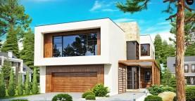 Двухэтажный дома в стиле модерн с практичным интерьером и гаражом для двух автомобилей.