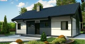 Проект одноэтажного дома традиционной формы с современным экстерьером.