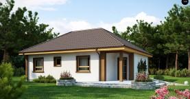 Небольшой комфортный одноэтажный дом в форме буквы «L» с тремя спальнями.