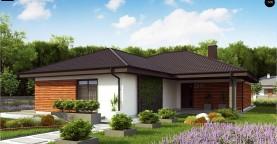 Проект комфортного и функционального одноэтажного дома.
