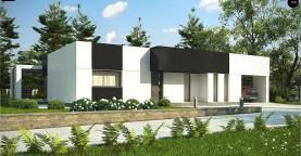 Проект современного одноэтажного дома с черно-белыми фасадами и открытым гаражом на 2 машины
