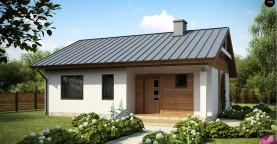 Аккуратный небольшой одноэтажный дом простой конструкции с кухней со стороны сада.