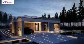 Современный одноэтажный дом с навесом для автомобиля