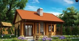 Маленький одноэтажный дом, оснащенный всем необходимым для круглогодичного проживания.
