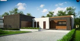 Одноэтажный дом с плоской кровлей и террасой