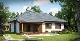 Проект практичного одноэтажного дома в традиционном стиле.